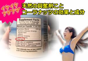 【天然の興奮剤】コーラナッツの効果と有効成分について