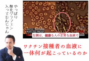 ワクチン接種者の血液に一体何が起こっているのか